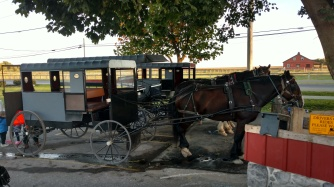Amish buggy ride through the beautiful countryside, and to an Amish farm to get cookies