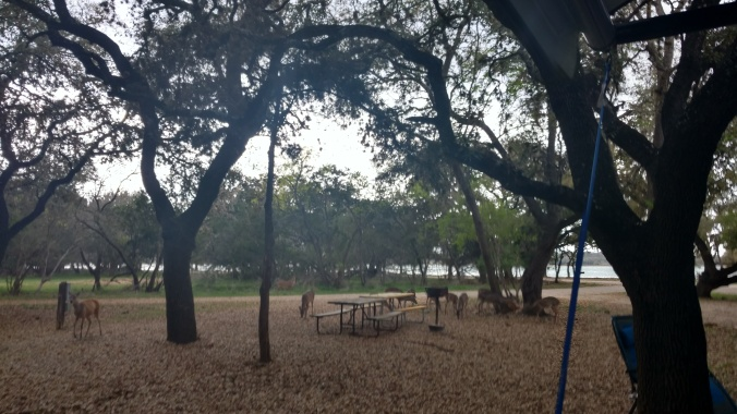 The Review of Medina Lake RV Campground | American Road Scholars