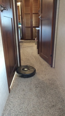Roomba has a lot of work to do as well!