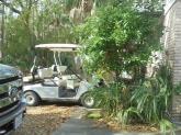 the golf carts